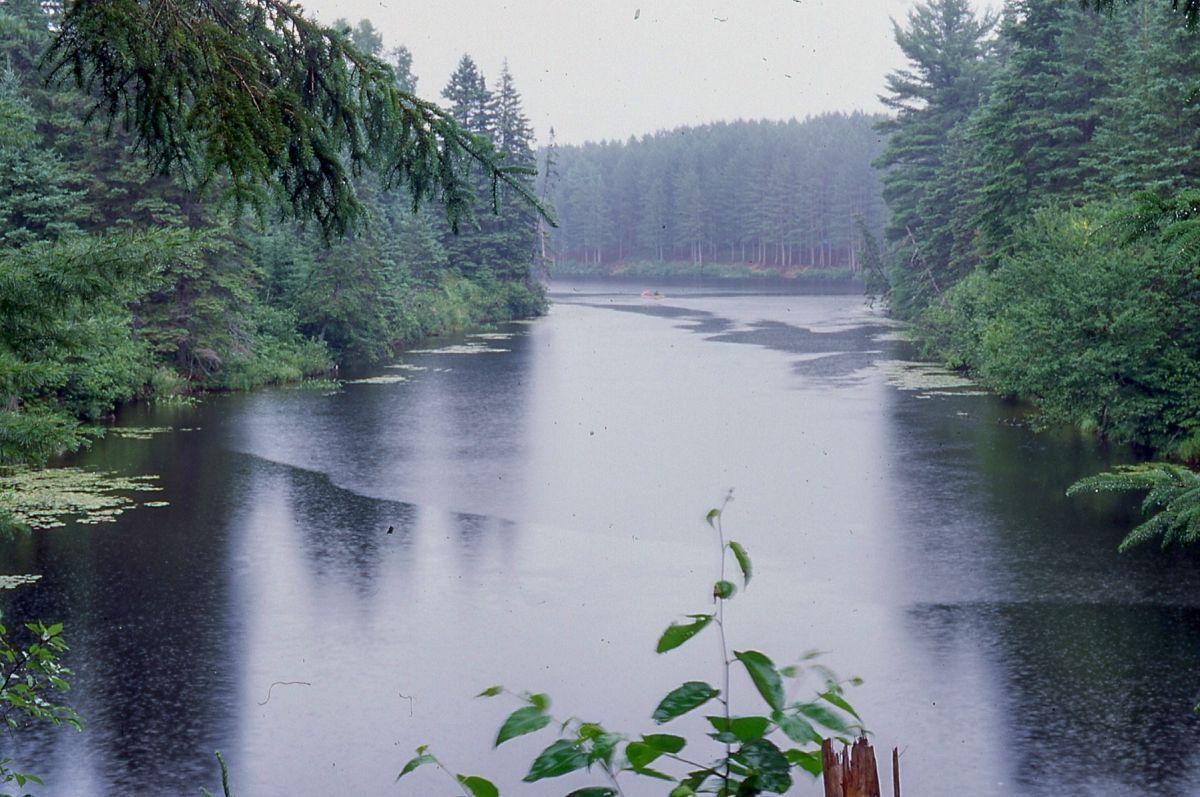 --1995 - Pog Lake