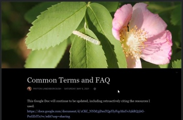 --Common Terms and FAQ