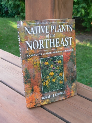 --Native Plants of the NorthEast